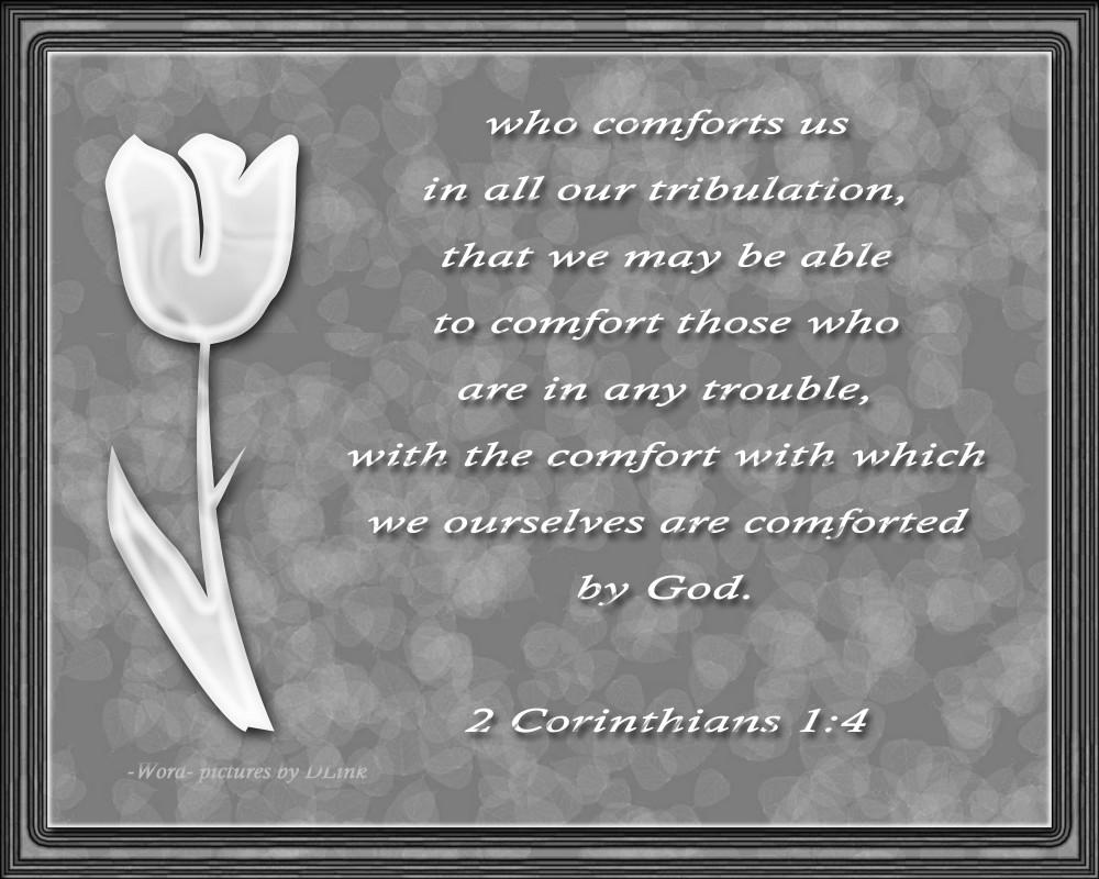 2 Corin 1;4