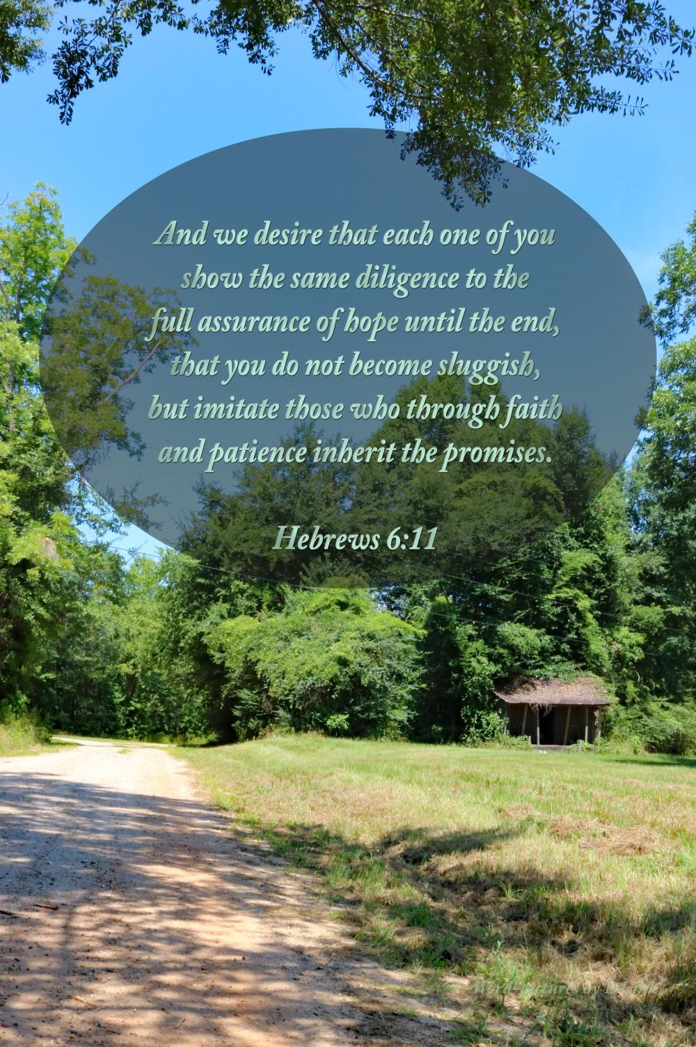 Hebrews 6;11